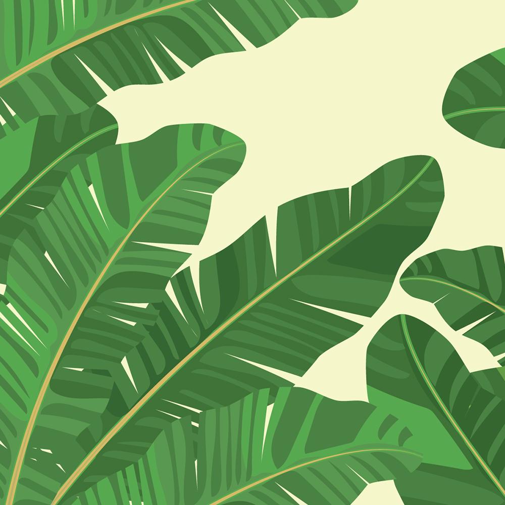 Image de la catégorie pour Plantes