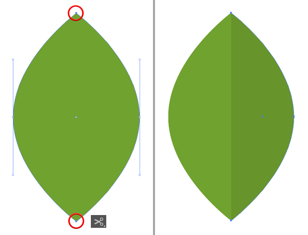 how to illustrate avocado