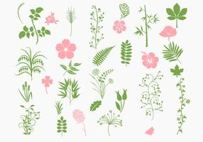 Pink and Green Organic Vector Pack