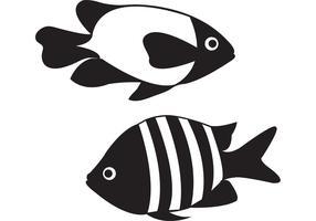 Aquarium Fish Vectors