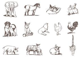 Pets and Zoo Animal Vector Pack