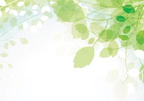 Spring Leaves Vector Background