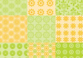 Summer Citrus Pattern Vector Pack
