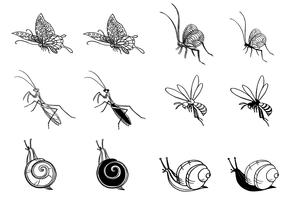Hand Drawn Insect Vector Pack