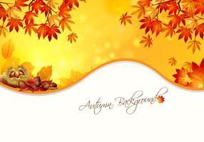 Warm Autumn Background Vector