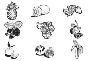 Hand Drawn Fruit Vector Pack