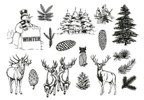 Natural Forest and Winter Vector Pack