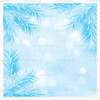 Blue Christmas Pine Branches Vector Background
