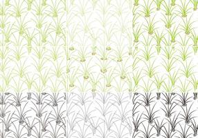 Grass Pattern Vector Pack