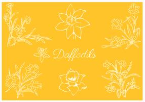Daffodil Vector Pack