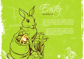 Easter Bunny Vector Background