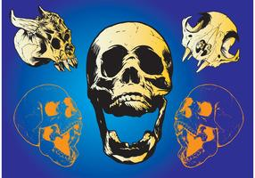 Scary Skulls