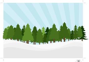Pine Trees Landscape