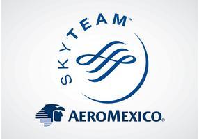 AeroMexico SkyTeam
