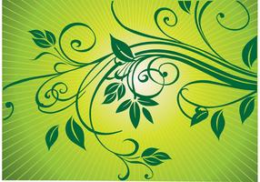 Fresh Nature Ornaments Vector