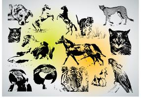 Download Animal Vectors