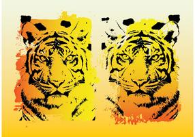 Tigers Vector Graphics