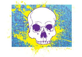 Free Skull Stock Image