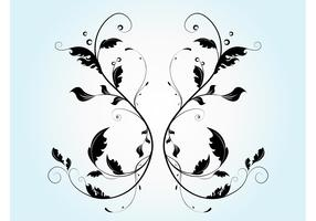 Vector Flourish Graphics