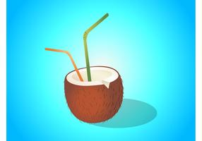 Coconut Drink Illustration