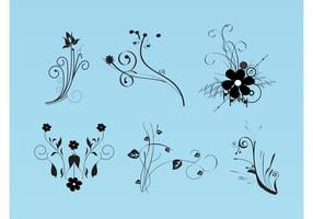 Beautiful Flowers Vector Images