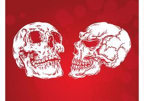 Simple Skulls Vector