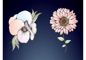 Gentle Flowers