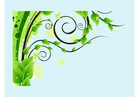 Lush Tree Leaves