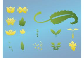 Various Leaves