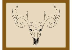 Reindeer Skull Vector
