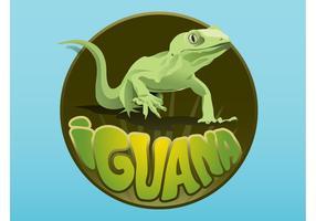 Iguana Layout