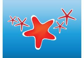 Starfish Clip Art