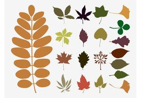 Fall Leaves Vectors