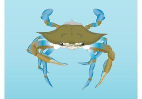 Vector Crab