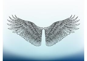 Bird Wings Image