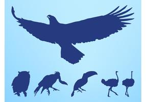 Birds Silhouettes Set
