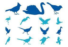 Bird Silhouettes Set