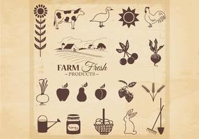 Farm Fresh Products Vector
