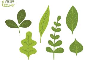 Free Green Leaves Vector Pack