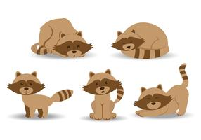 Racoon Cartoon Vectors