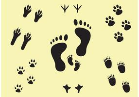 Next Steps Footprint Vector Set