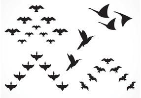 Free Vector Flock Of Birds