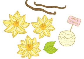 Hand Drawn Vanilla Flower Vectors
