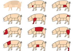 Hog Meat Cuts