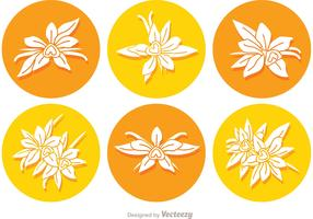 Vanilla Flower Round Icon Vectors