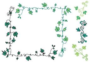 Free Ivy Vine Vector Series