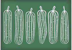 Chalk Drawn Cucumber Vectors