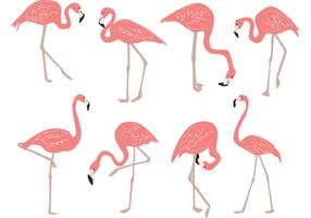 Hand Drawn Flamingo Vectors