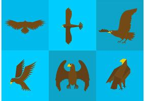 Golden Eagle Vectors