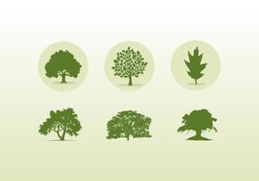 Various Oak Trees Icons And Silhouettes